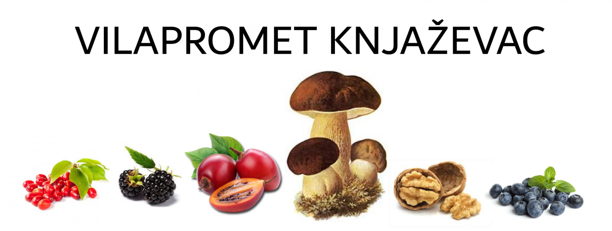 vilapromet.com